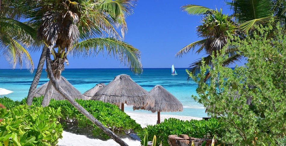 Palm trees and beach in Tulum Mexico