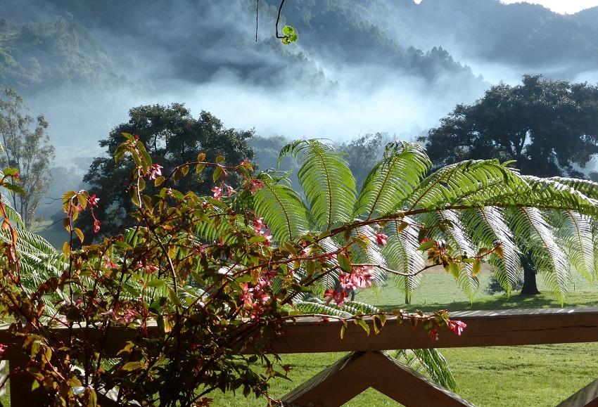 Hacienda Mil Amores Guatemala View