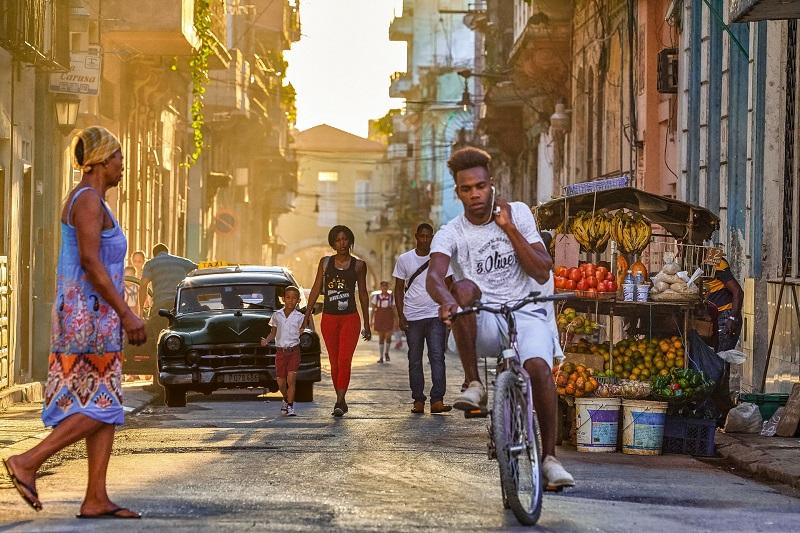 Havana Specialist