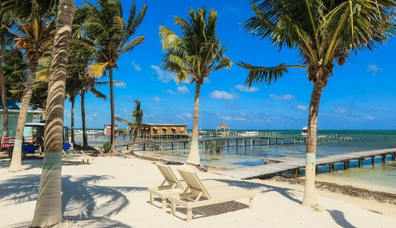 Sandy beach with palm trees in Belize