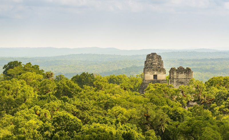 Visiting Tikal on a tailor made holiday to Guatemala