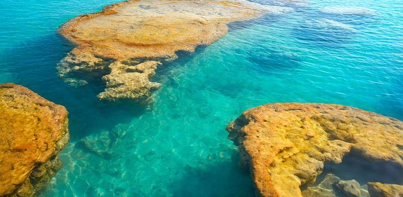 Stromatolites in the lake