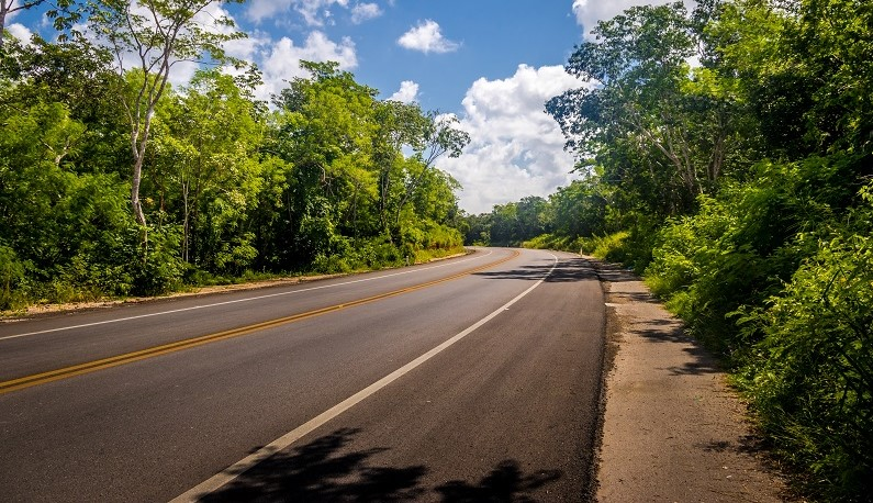 Road passing through picturesque forest in the Yucatan Peninsula