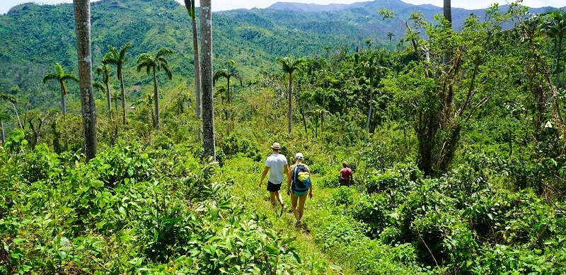 Walking excursion from Baracoa, Cuba