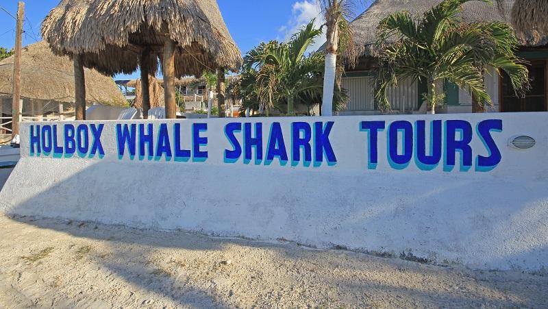 Whale Shark Tour Sign