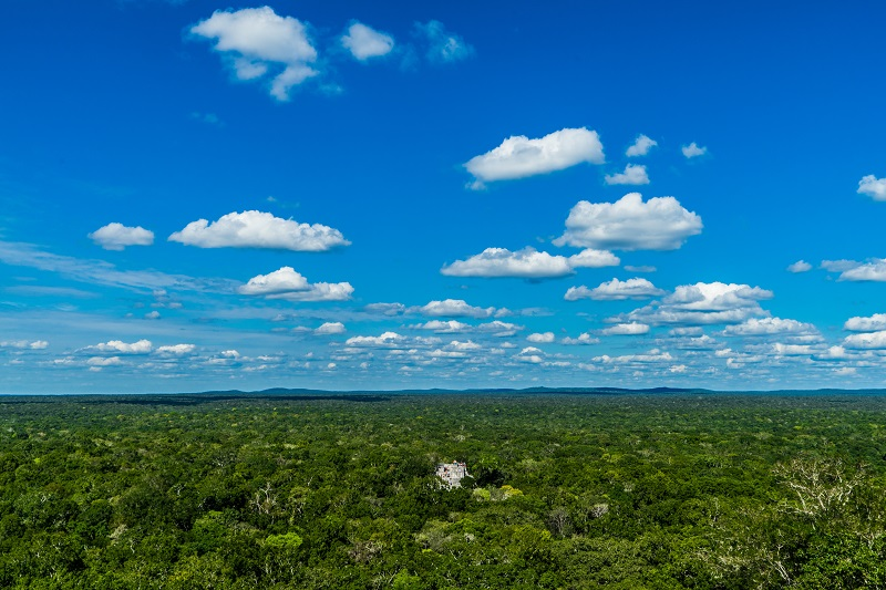 Calakmul within the Selva Maya Forest